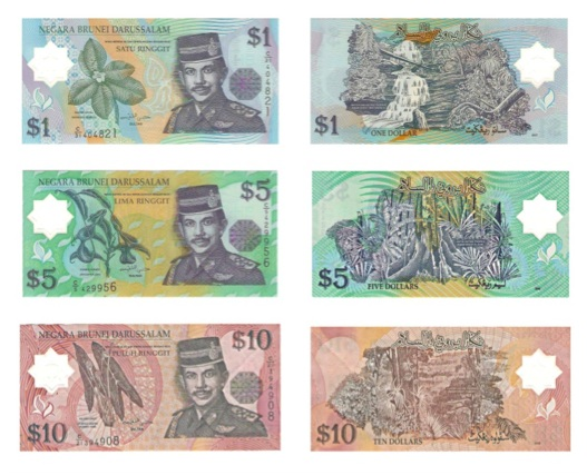 What is The National Currency of Brunei?