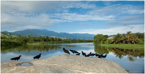 What is The National River of Colombia?