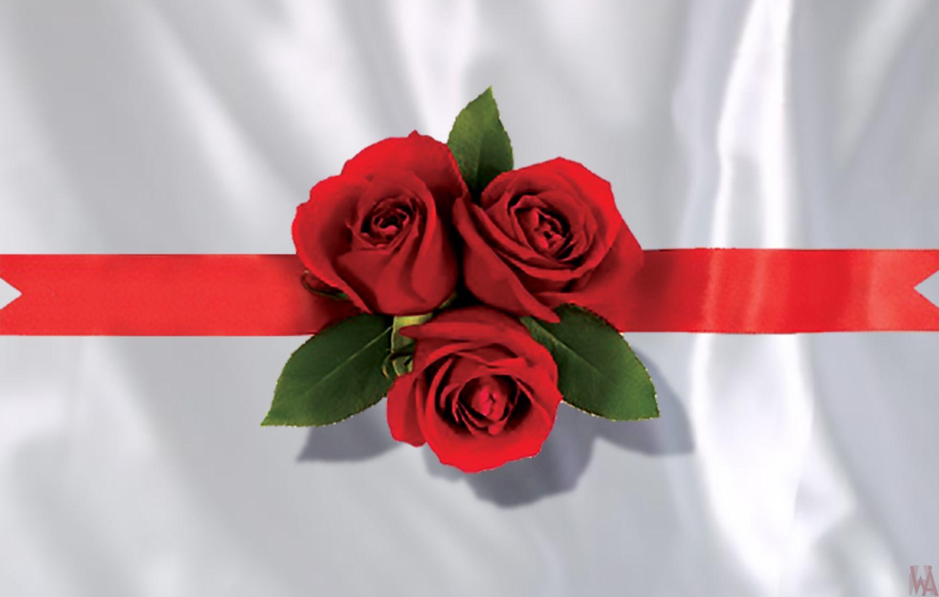roses are blocked at the Ribbon