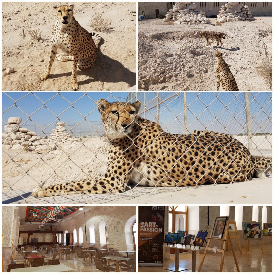 National Zoo of Qatar | Symbols of Qatar